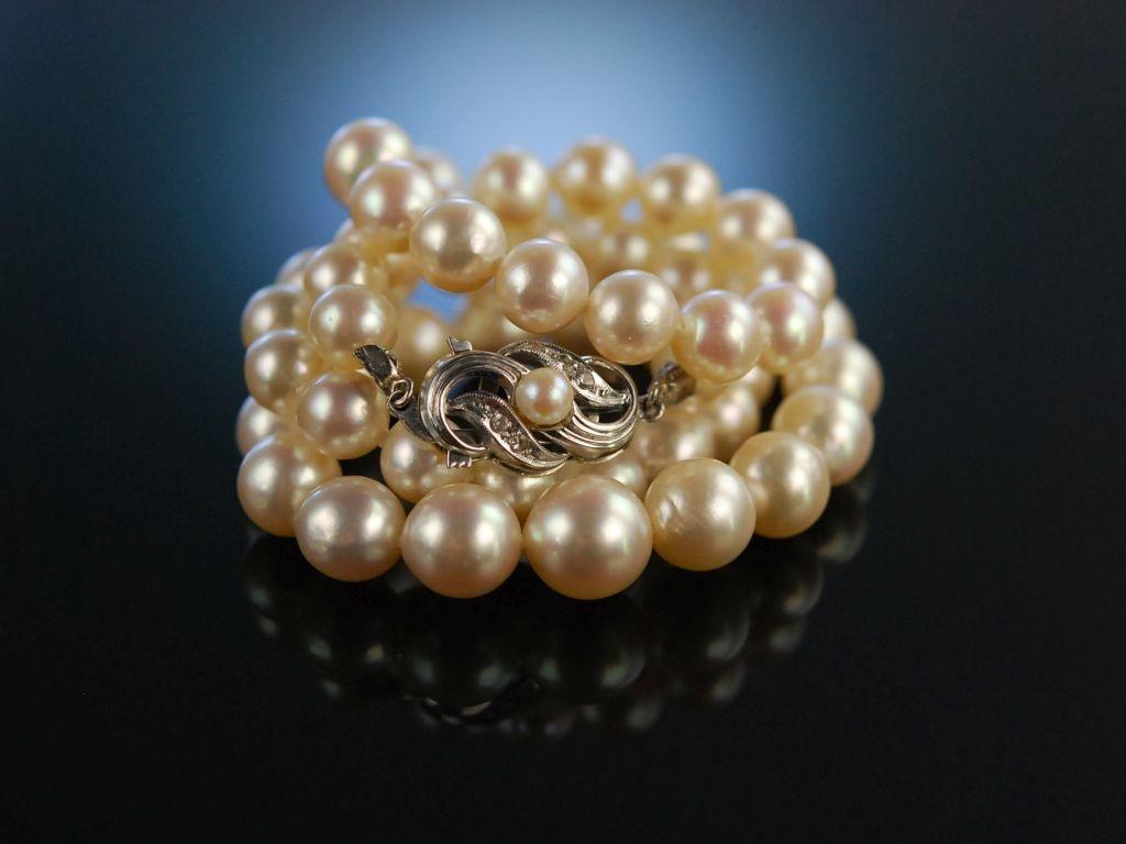image Perlen kette in die fotze