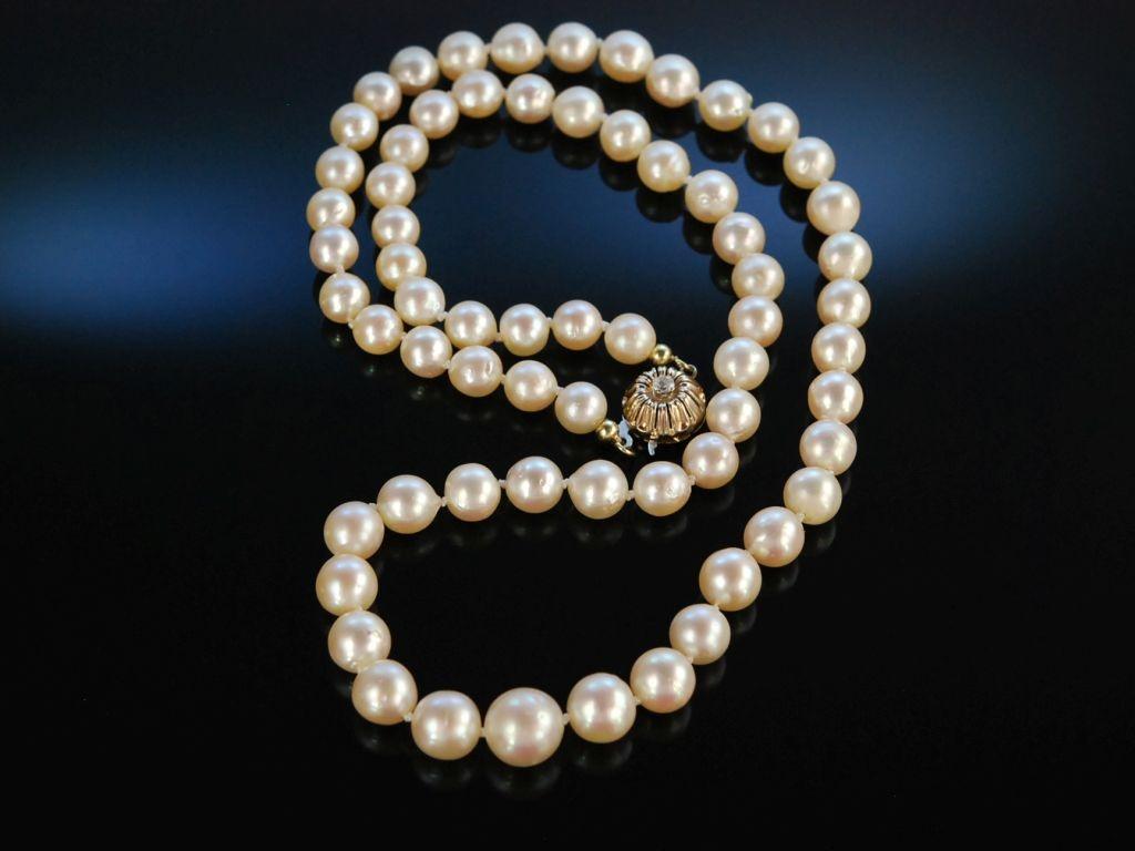 feine perlen zuchtperlen kette akoya in verlauf gold 585 399 00 eu. Black Bedroom Furniture Sets. Home Design Ideas