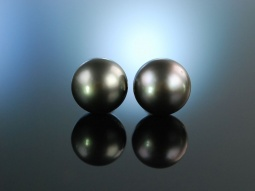 Big Grey Pearls! Tahiti Zucht...
