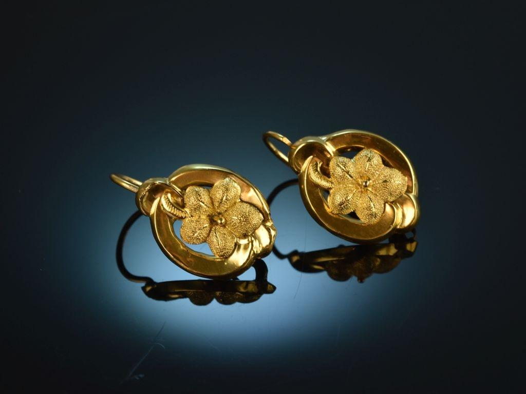 Salzburg um 1850! Hübsche Biedermeier Blüten Ohrringe Gold