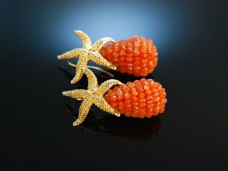 Shiny Orange Sea Stars! Ohrringe Silber 925 vergoldet Karneol